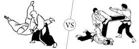 Aikido and Hapkido