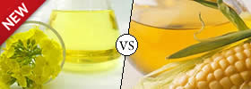 Canola Oil vs Corn Oil