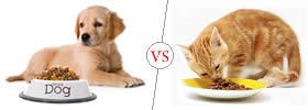 Dog vs Cat Food