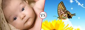 Gorgeous vs Beautiful