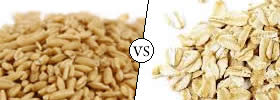 Oats vs Rolled Oats