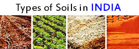 Different Types of Soils in India