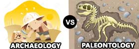 Archaeology vs Paleontology