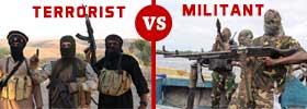 Terrorist vs Militant