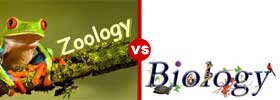 Zoology vs Biology