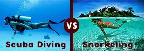 Scuba Diving vs Snorkelling