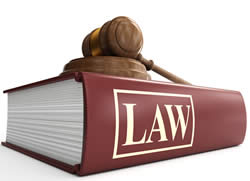 Difference between Law and Bylaw | Law vs Bylaw