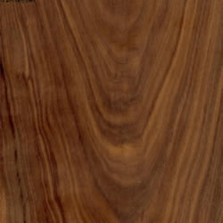 Key Difference Walnut And Cherry Wood Are Two Different Types Of Hardwoods Is Mainly Sourced From Trees Belonging To The Juglans Genus