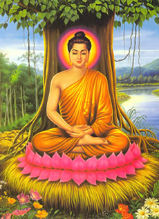 a comparison between janism and buddhism Best answer: difference between buddhism and jainism 1) on karma: buddhism : buddhism believes in the universality of karma, which is a result of one's action.