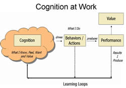 difference between cognitive and emotion intelligence Cognitive and emotional development in children  gardner emphasized the  importance of personal intelligence for succeeding in  one can see this  relationship in the child's language at four years of age the child begins.