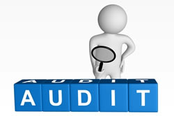 difference  audit  review audit  review