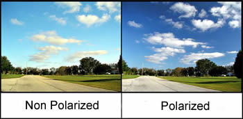 d4912d8e85 Difference between Polarized and Non Polarized Sunglasses ...