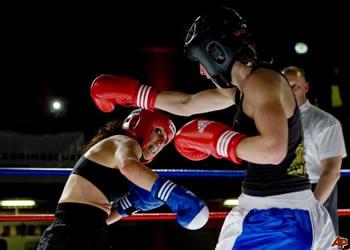 japanese kickboxer