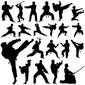 Difference between Kung Fu and Martial Arts | Kung Fu vs Martial Arts