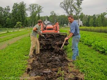 Difference between Organic and Chemical Farming   Organic ...