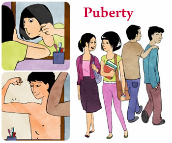Difference between Youth and Puberty | Youth vs Puberty