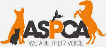 an overview of the american society for the prevention of cruelty to animals aspca and its organizat Nhspca services & programs the new hampshire spca serves people and pets from across the state of new hampshire through its programs, which include pet adoption, pet behavior training, humane education, animal cruelty intervention, low cost spay/neuter clinics and much more.