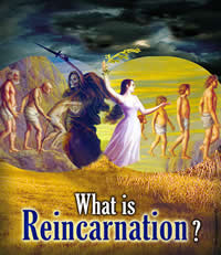 What is Reincarnation