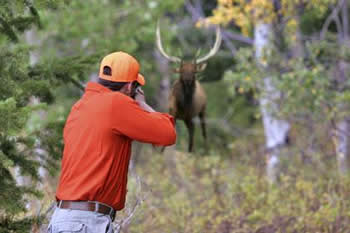 Image result for hunting without a license