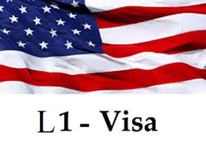 non immigrant visa options for the usa The consular sections of the us embassy and us consulate general in the united arab emirates are responsible for providing visa services to those seeking to enter the united states for a temporary period and for those wishing to take up indefinite or permanent residence in the united states please visit our global support services.