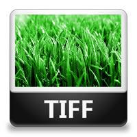 скачать Tiff файл - фото 8
