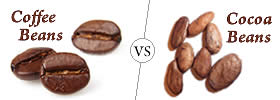 Difference between Coffee Beans and Cocoa Beans