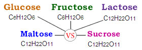Difference between Fructose, Glucose, Lactose, Maltose and Sucrose