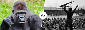 Gorilla vs Guerilla