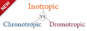 Difference between Inotropic, Chronotropic and Dromotropic