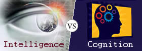 Difference between Intelligence and Cognition
