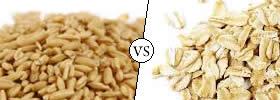 Oats vs Rolled Oats