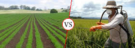 Difference between Organic and Chemical Farming