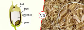 Rice Bran vs Rice Husk