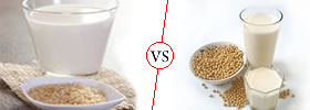 Rice Milk vs Soy Milk