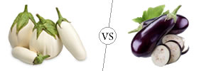 White and Purple Eggplant
