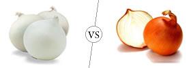 White Onions vs Yellow Onions