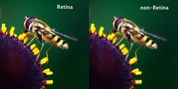 The differences between retina and non-retina displays