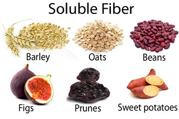 Examples Of Human Food That Are High In Fiber