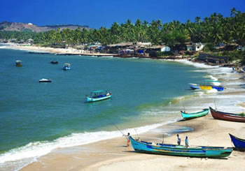 sightseeing places in goa