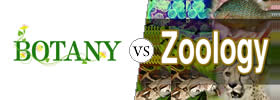 Botany vs Zoology