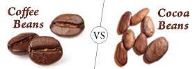 Coffee Beans vs Cocoa Beans