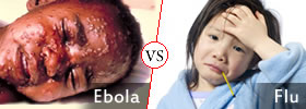 Ebola vs Flu