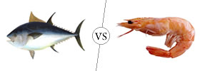 Fish vs Prawn