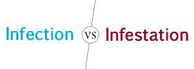 Infection vs Infestation