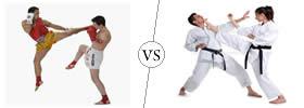 Kickboxing vs Karate