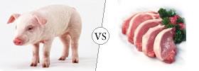 Pig vs Pork
