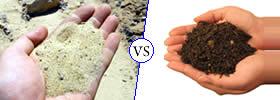 Sand vs Soil