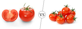 Tomatoes vs Cherry Tomatoes