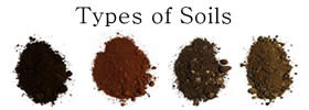 Different Types of Soils