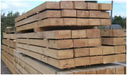 Difference Between Hardwood And Softwood Hardwood Vs